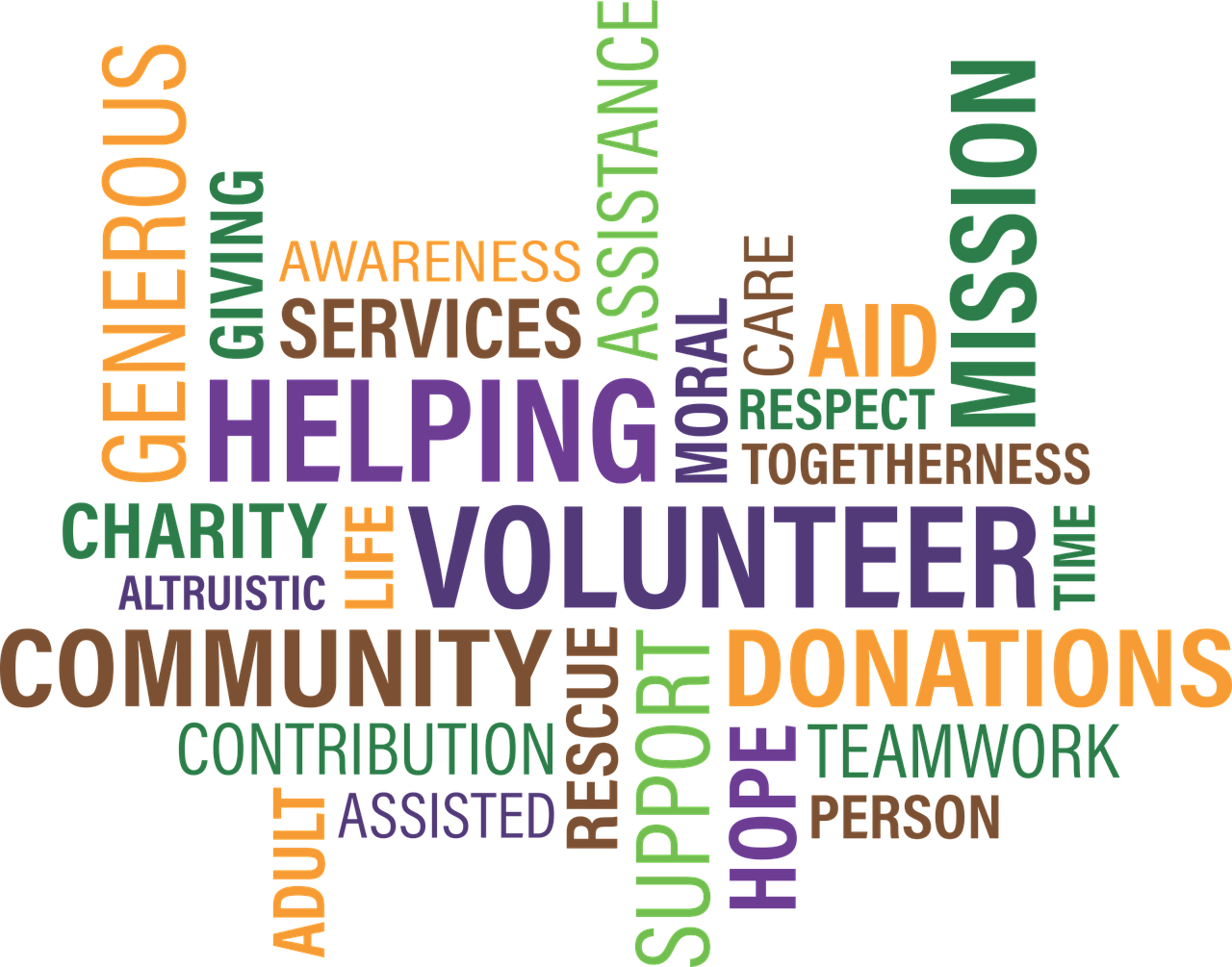 Non Profit and Charity